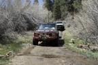 Trail Maintenance - 20
