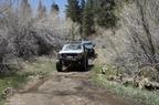 Trail Maintenance - 22
