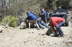 Trail Maintenance - 50