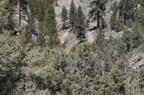 Trail Maintenance - 52