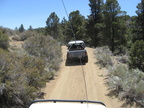 Trail Maintenance - 59