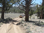 Trail Maintenance - 80