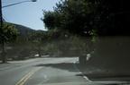 Driving through Silverado - 07