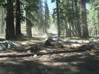 Swamp Lake 2012 - 039