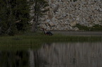 Swamp Lake 2012 - 146