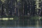 Swamp Lake 2012 - 190