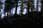 Swamp Lake 2012 - 223