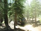 Swamp Lake 2012 - 313